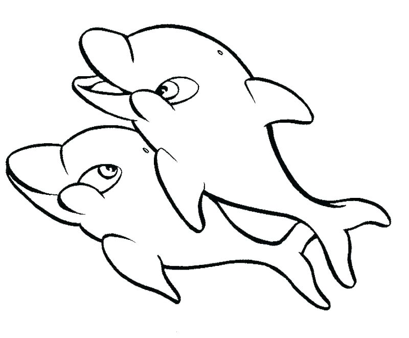 800x661 Free Printable Dolphin Coloring Pages For Adults Page Kids Prin