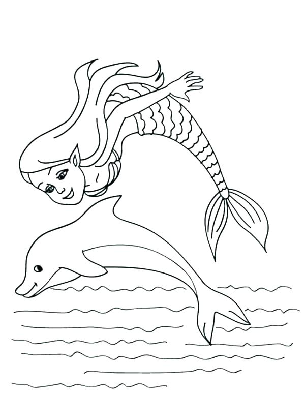 600x777 Coloring Pages Dolphins Printable Coloring Dolphin Coloring Pages