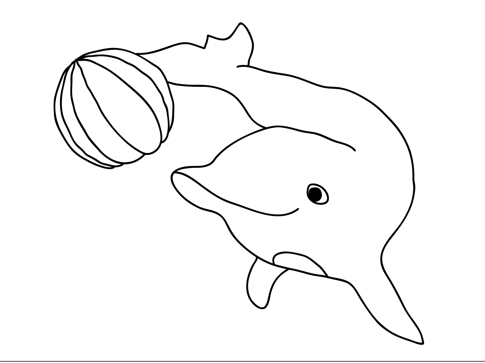 1600x1200 Dolphin Coloring Page Best Of Cute And Baby Dolphin Coloring Pages