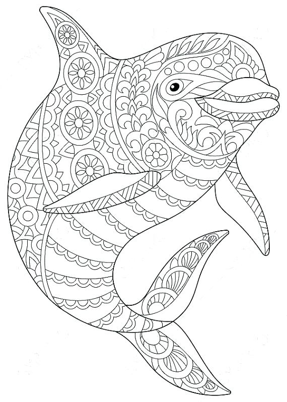 Dolphin Coloring Pages To Print Out at GetDrawings | Free ...