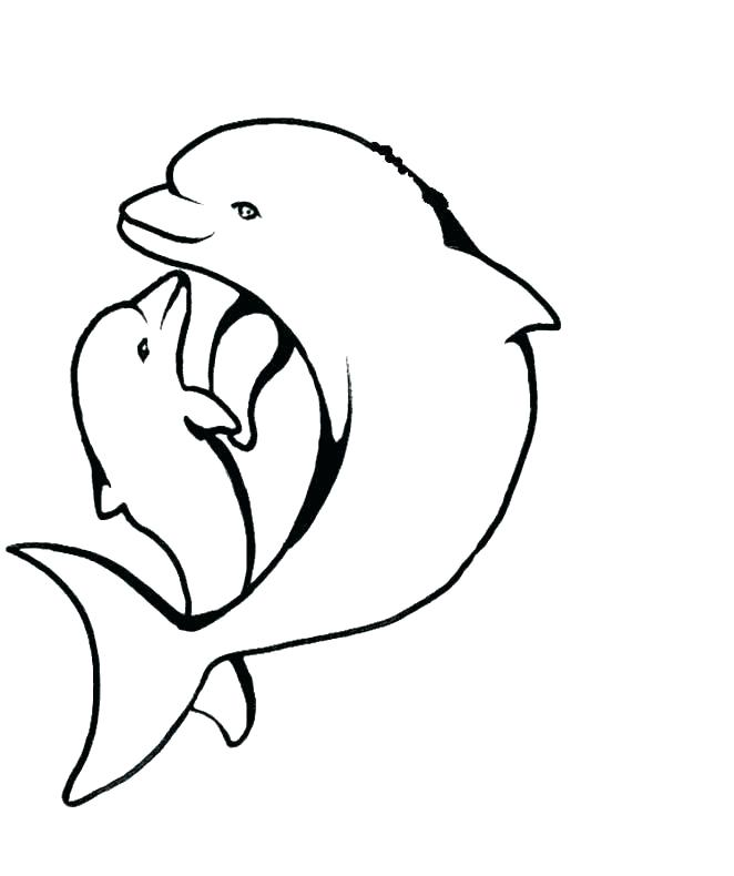 662x790 Dolphin Coloring Pages Print Printable Kids Dolphins Free