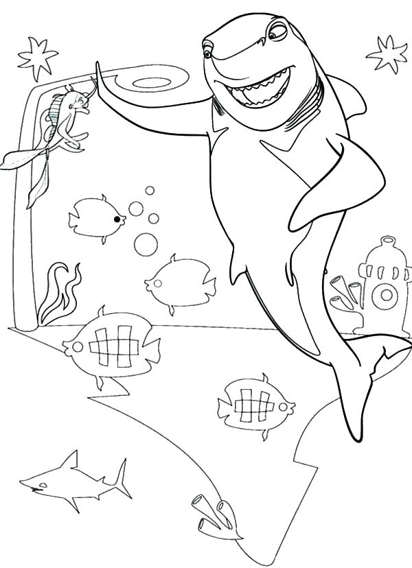 Dolphin Tale Coloring Pages at GetDrawings | Free download