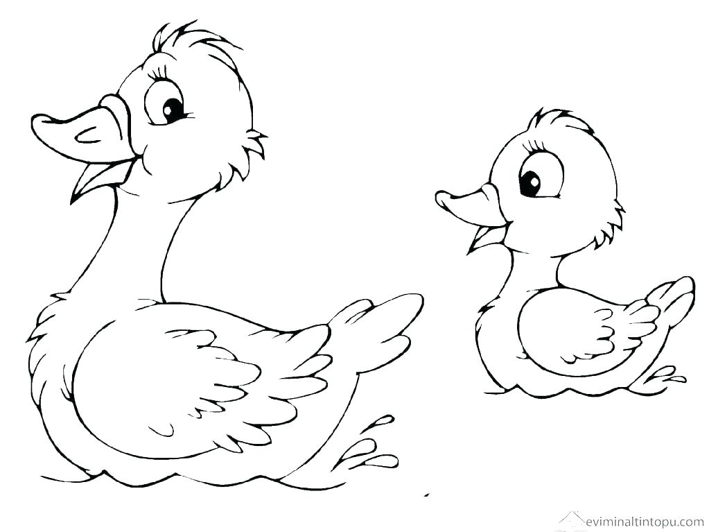 1023x767 Duck Printable Colouring Pages Coloring To Print Baby At The Duck