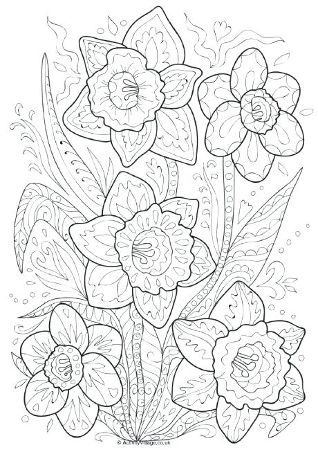 460x650 Daffodil Coloring Page Daffodil Doodle Colouring Page Daffodil