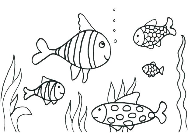 618x437 Bass Fish Coloring Pages Remarkable Bass Fish Coloring Pages Image