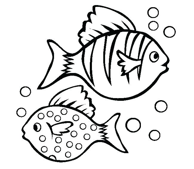 650x565 Bass Coloring Pages