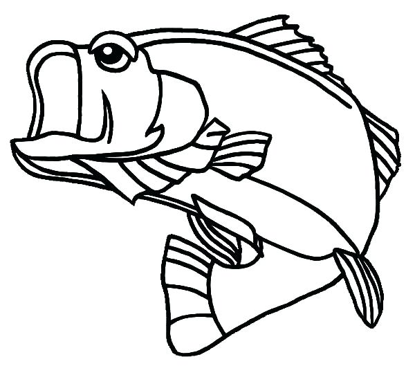 600x529 Bass Coloring Pages Bass Coloring Pages Fish Coloring Pages River