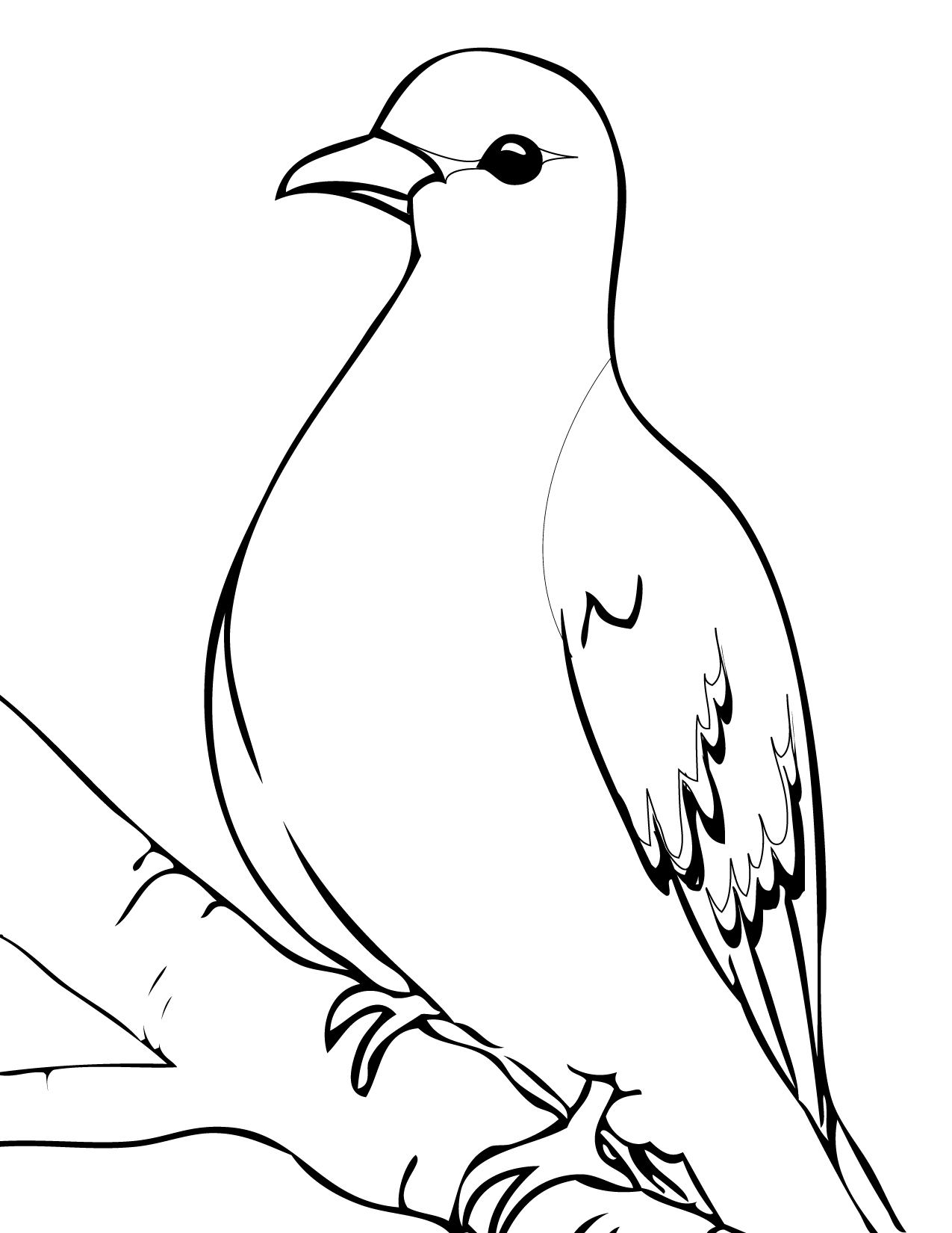 1275x1650 Mourning Dove Coloring Page