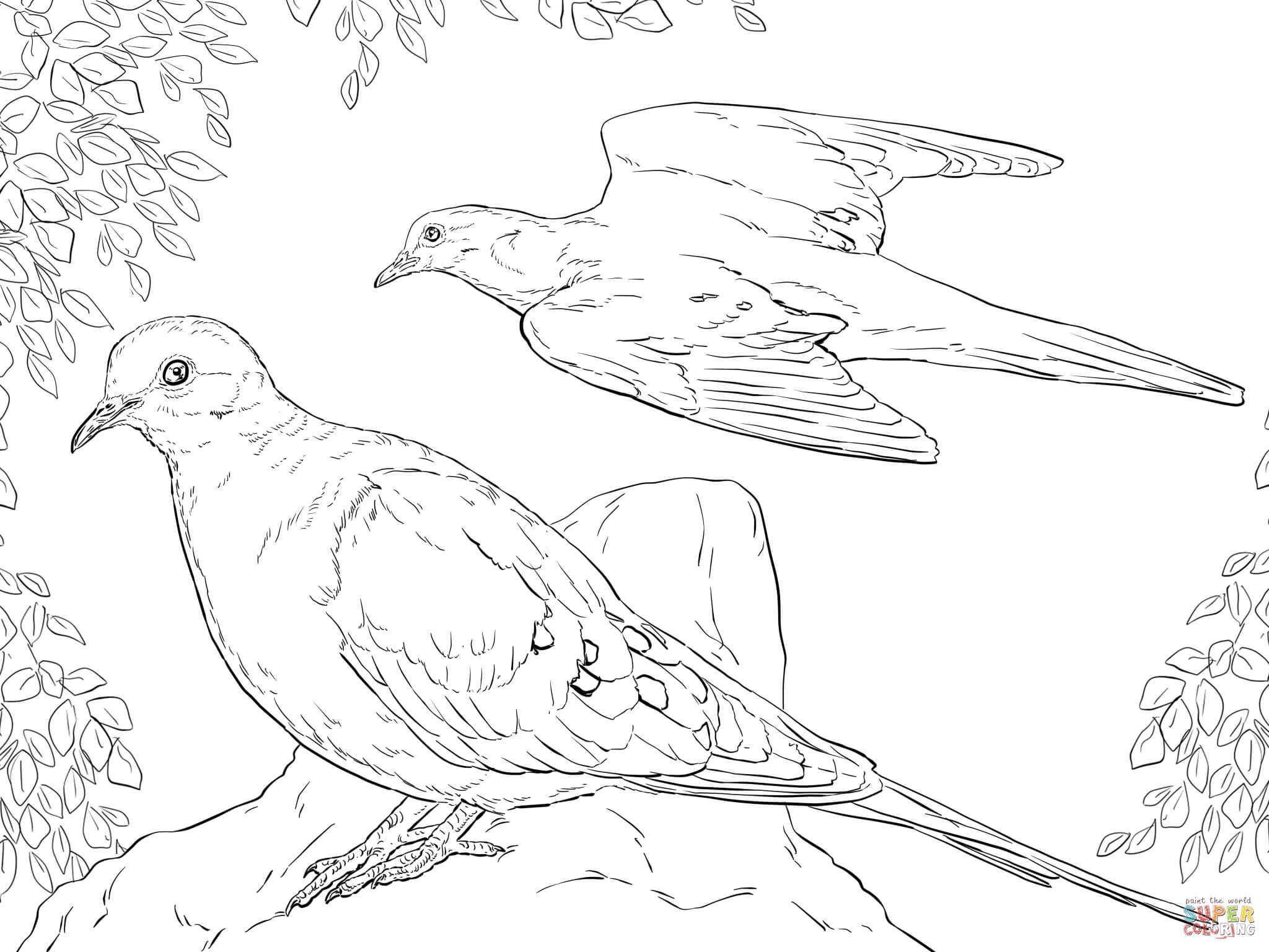 2048x1536 Doves Coloring Pages Free Coloring Pages Dove Coloring Page Image