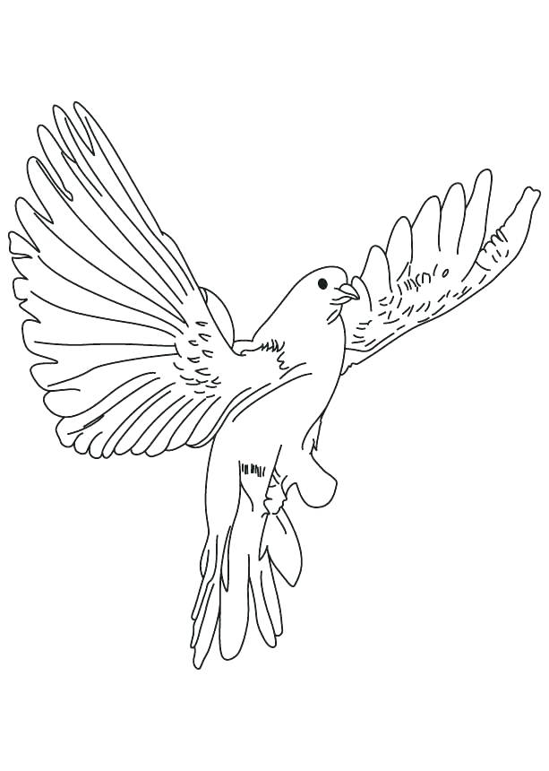 613x860 Dove Coloring Pages Doves Coloring Pages Back To The Coloring