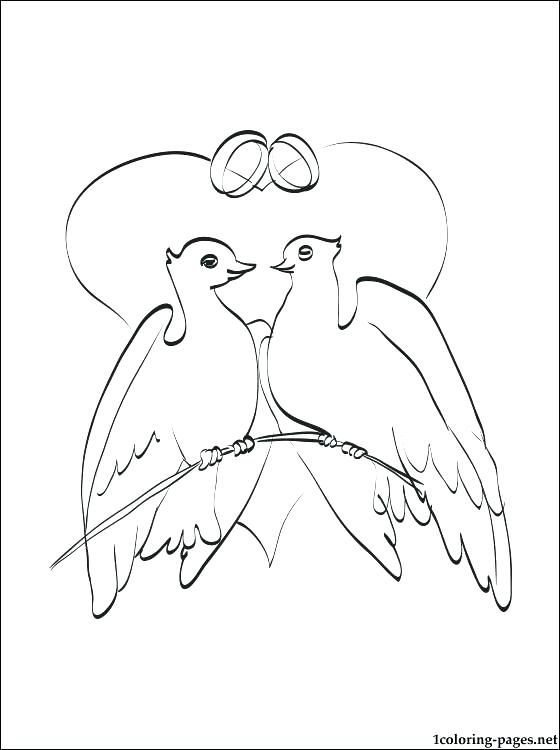 560x750 Dove Coloring Pages Doves Coloring Pages Wedding Doves Coloring