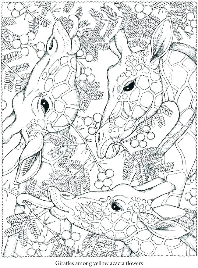 Downloadable Coloring Pages At Getdrawings Com Free For Personal