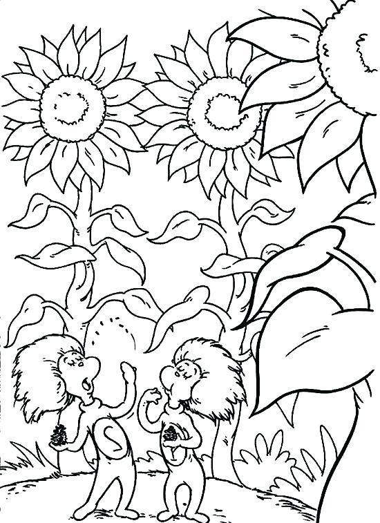 550x757 Dr Seuss Hat Printable