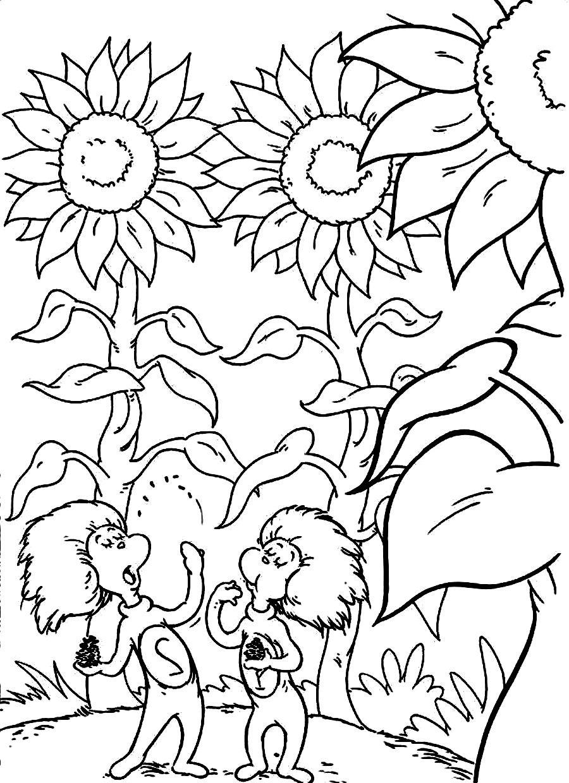 900x1240 Dr Seuss Coloring Pages Printable