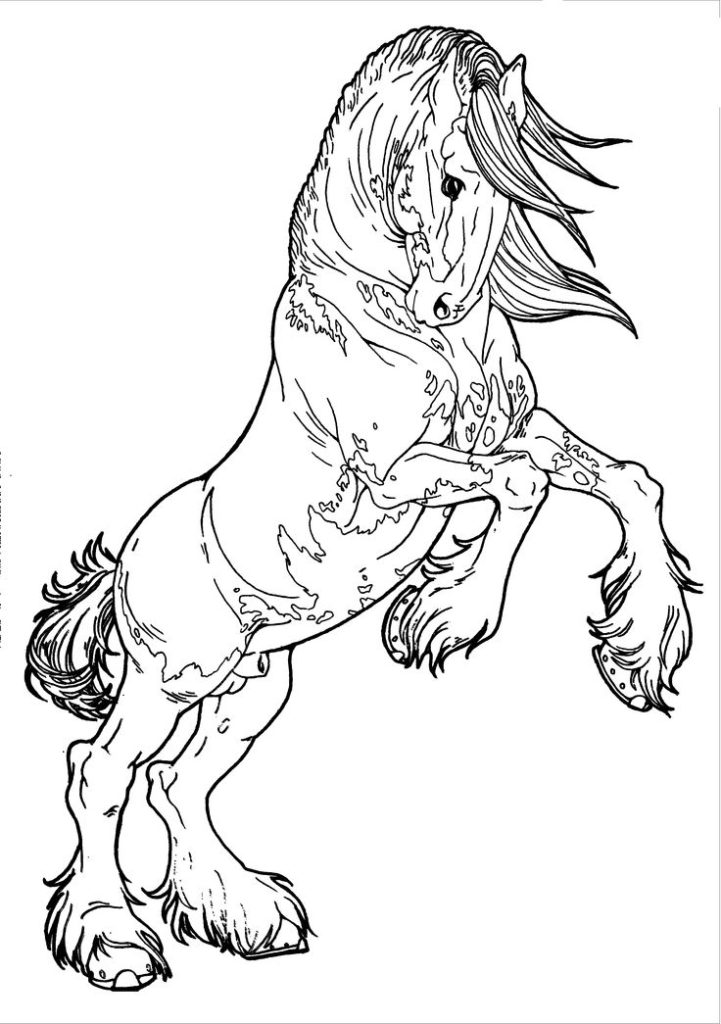 Draft Horse Coloring Pages