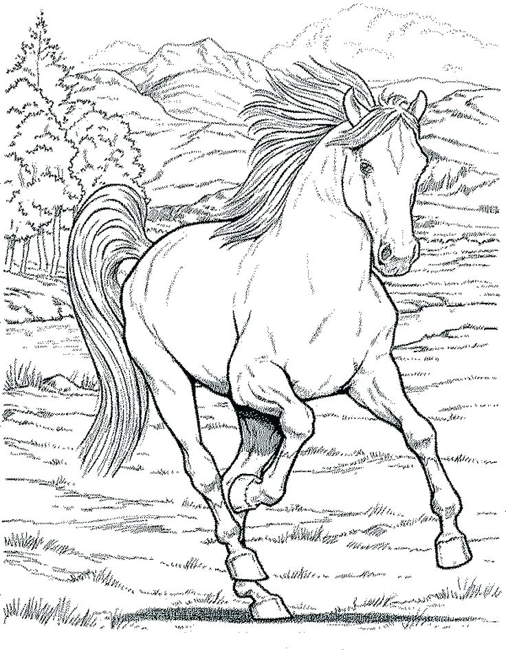 736x945 Free Draft Horse Coloring Pages Big Fuhrer Von