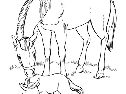 440x330 Breyer Horse Coloring Pages, Sabino Draft Horse Color Book