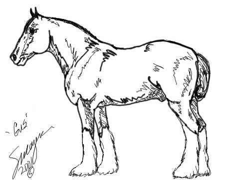 451x360 Gus The Clydesdale To Color, Drawn