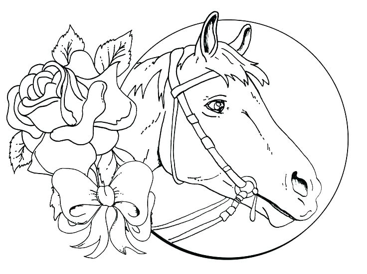 736x551 Horse Print Wallpaper Free Horse Coloring Pages Detail