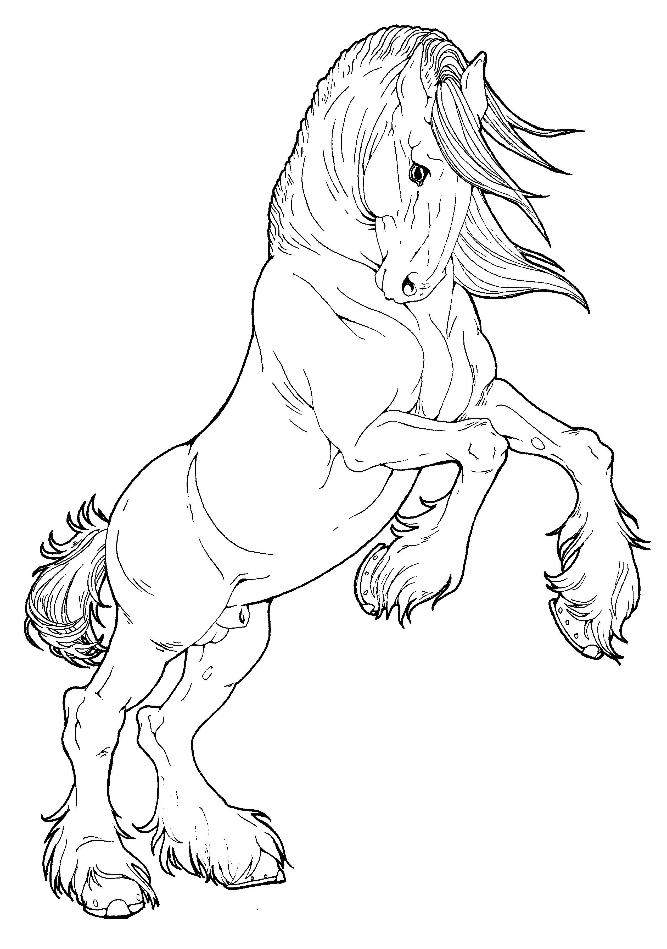 2549x3622 Draft Horse Sketch This Would Be An Awesome Tatt! Kolorowanki