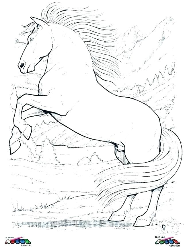 645x860 Free Horse Coloring Pages