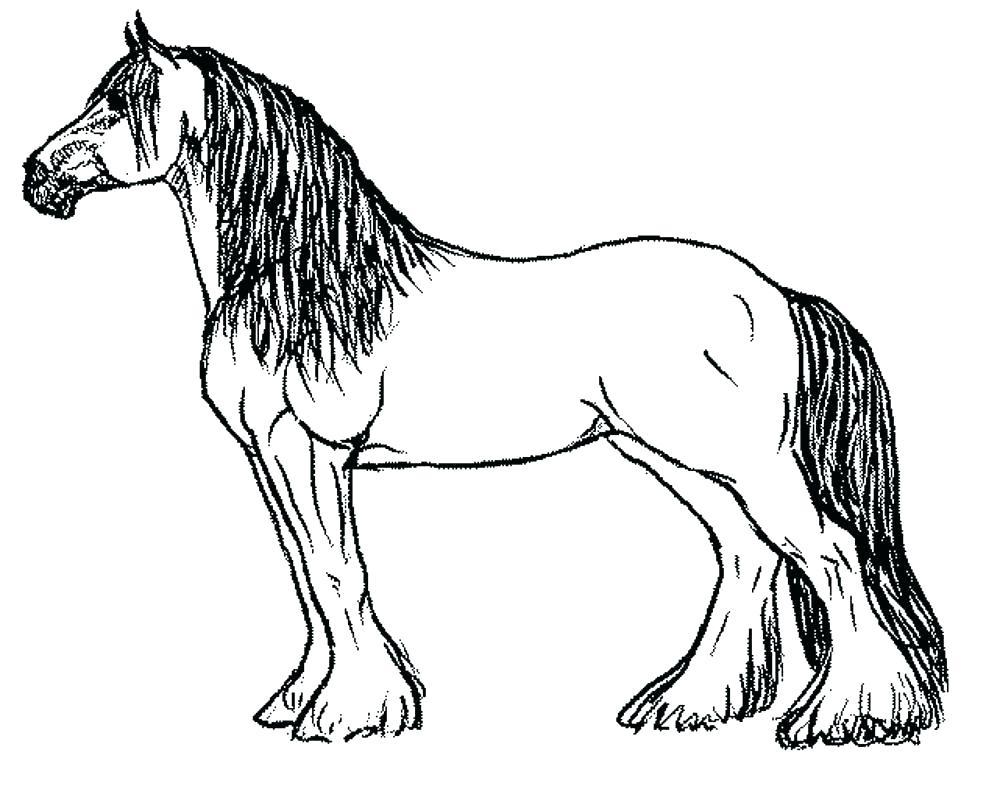1000x786 Coloring Horse Pages Quarter Horse Headless Horseman Coloring