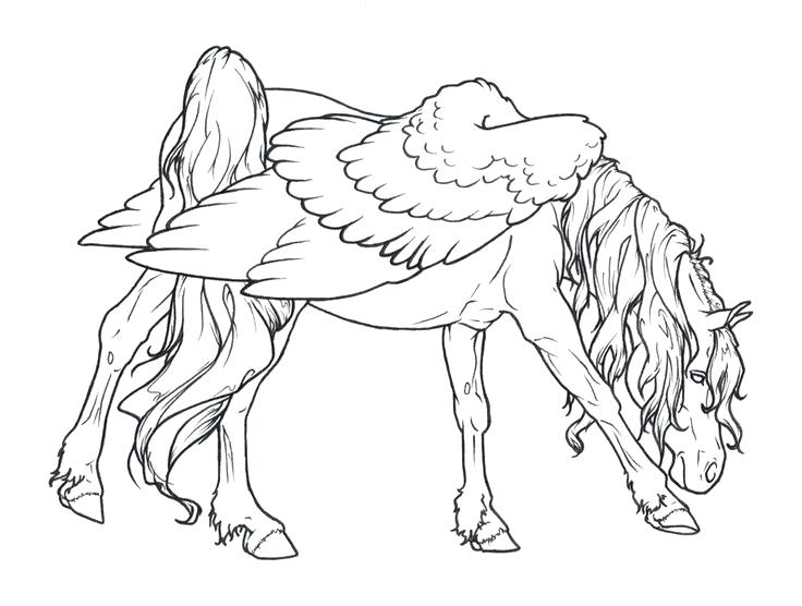 736x556 Draft Horse Coloring Pages Coloring Page Free Draft Horse Coloring
