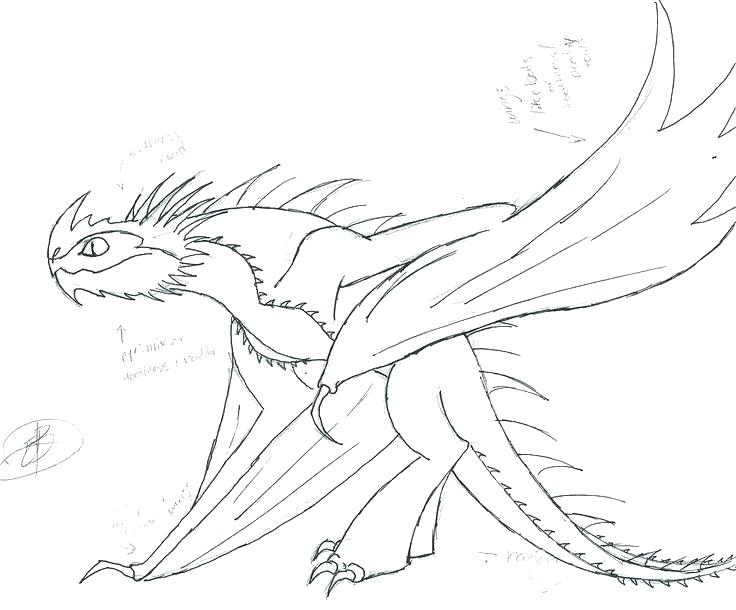 736x610 How To Train Your Dragon Coloring Pages Online How To Train Your