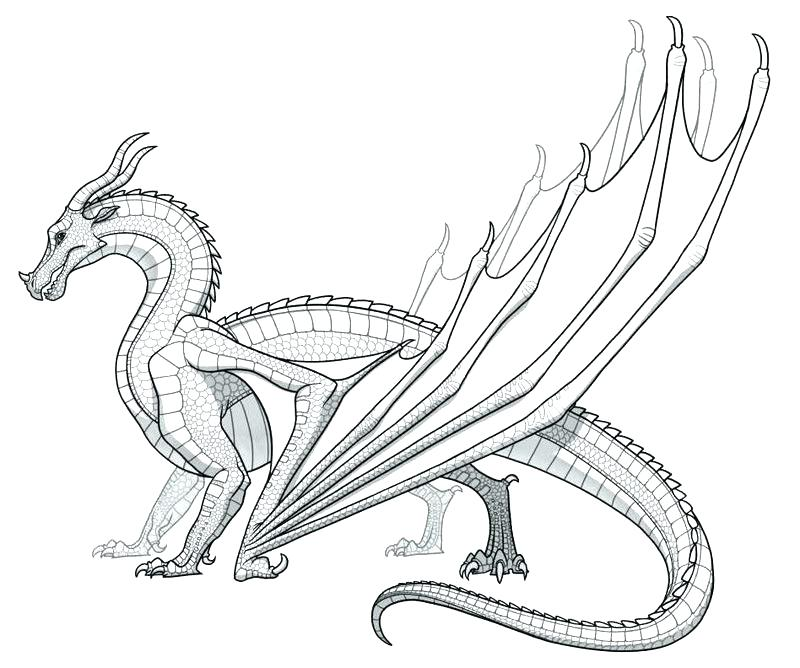 800x668 Coloring Pages Dragons