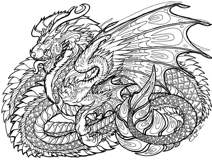 736x555 Best Zentangle Dragons Images On Coloring Books