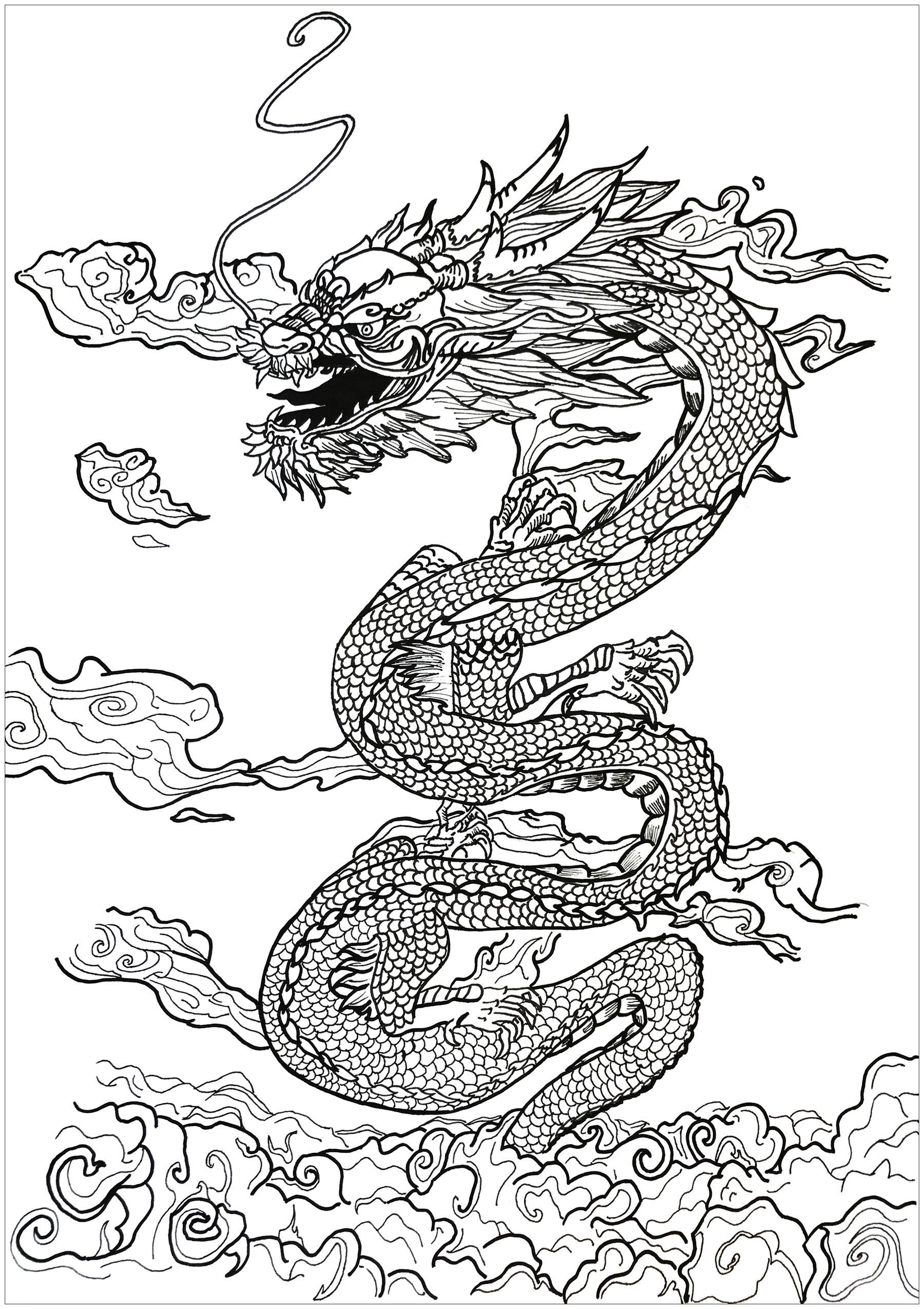 1800x2551 Dragon Asian Inspiration