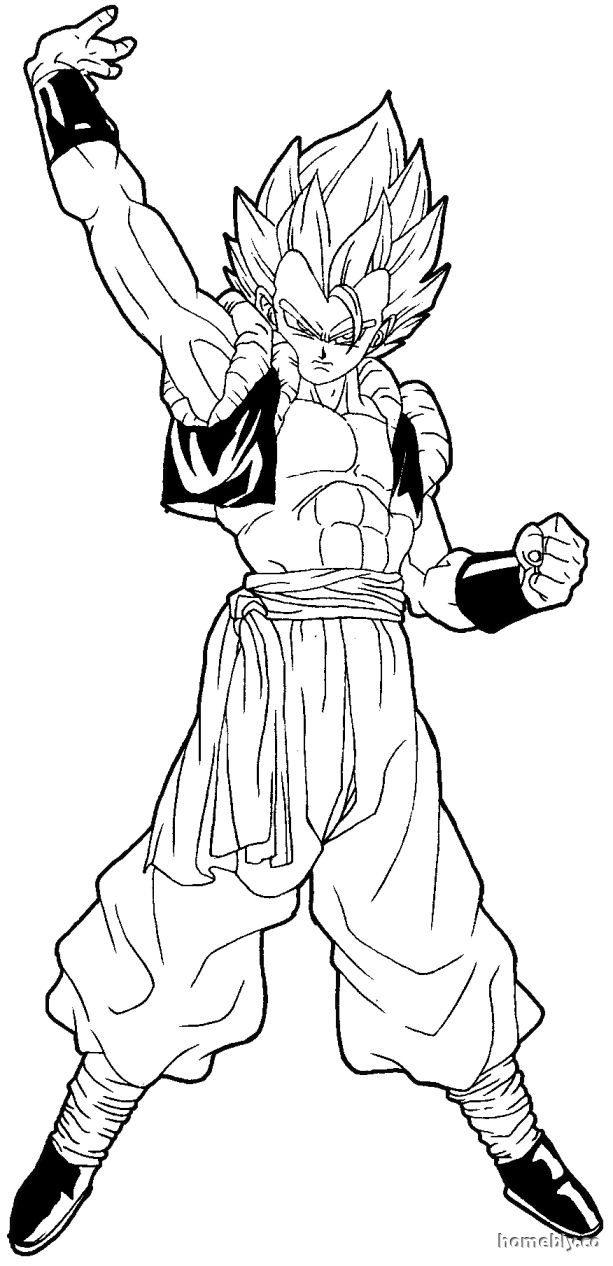 613x1266 Dragon Ball Z Gogeta Coloring Pages