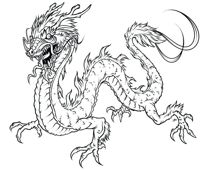 736x588 Printable Dragon Adult Coloring Pages Download Adult Coloring