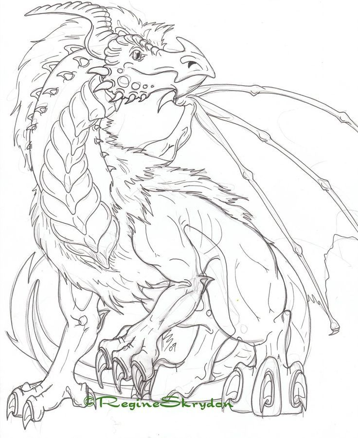 736x899 Dragon Coloring Pages For Adults To Download And Print For Free