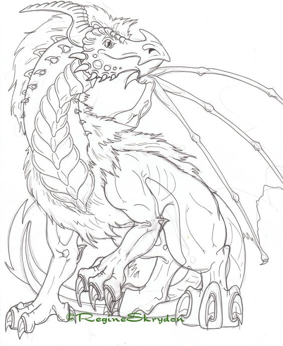564x689 Peachy Detailed Coloring Pages For Adults Free Printable Advanced