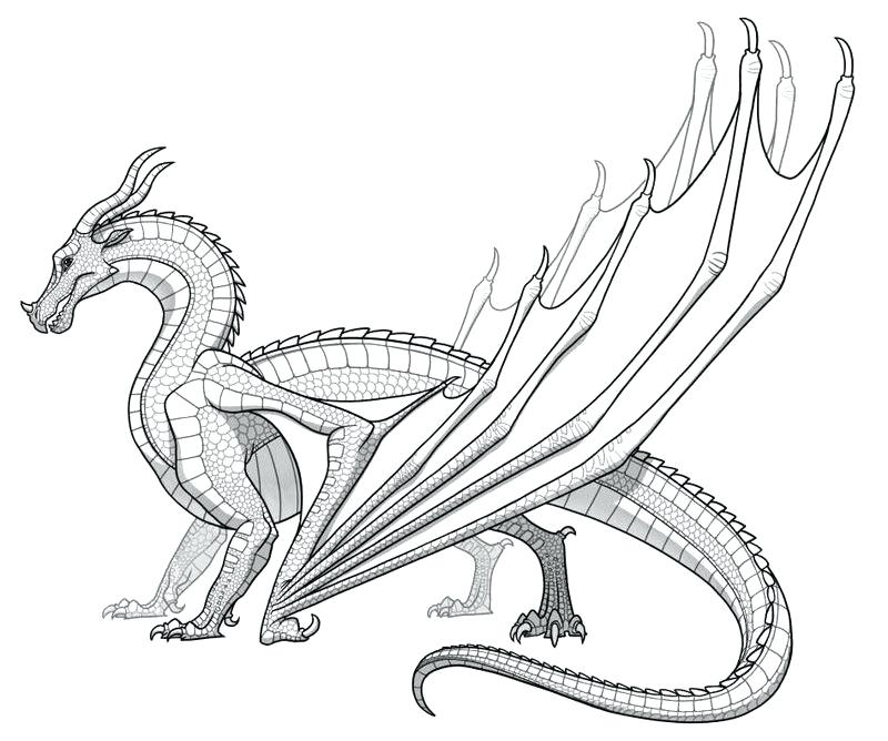 800x668 Dragon Coloring Pages
