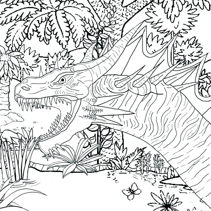 878x878 Fire Breathing Dragon Coloring Pages