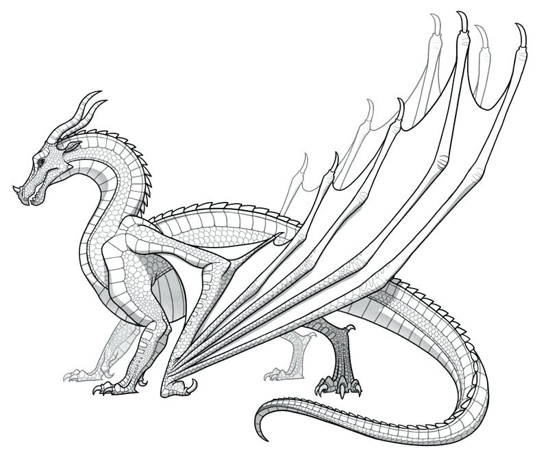800x668 Dragon Coloring Pages Online