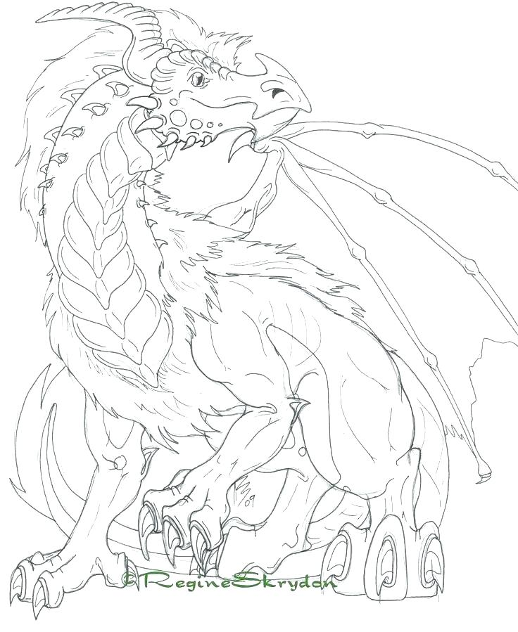 736x899 Dragon Coloring Pages For Adults Amazing Dragon Art Coloring Pages