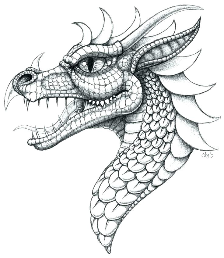 736x846 Dragon Head Coloring Page Dragon Head Coloring Page Chinese New