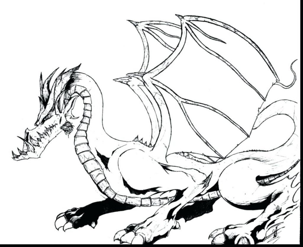 1024x837 Realistic Dragon Head Coloring Pages