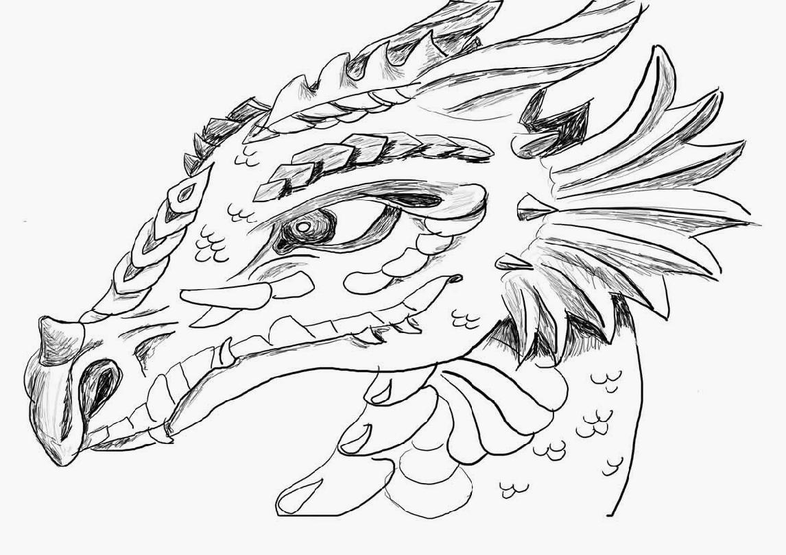 1146x810 Great Coloring Pages Of Dragon Heads Udneeb Has Dragon Coloring