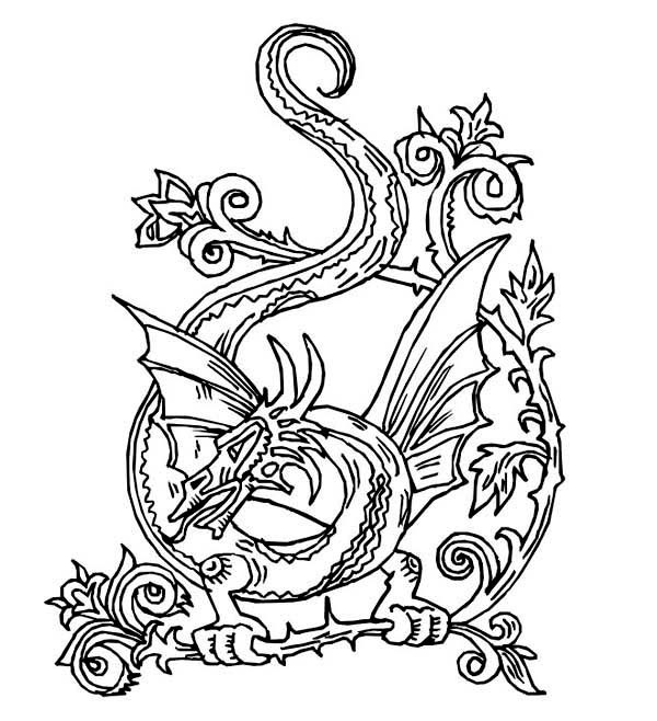 600x658 Dragon Mandala Coloring Pages Lovely Celtic Animal Coloring Pages
