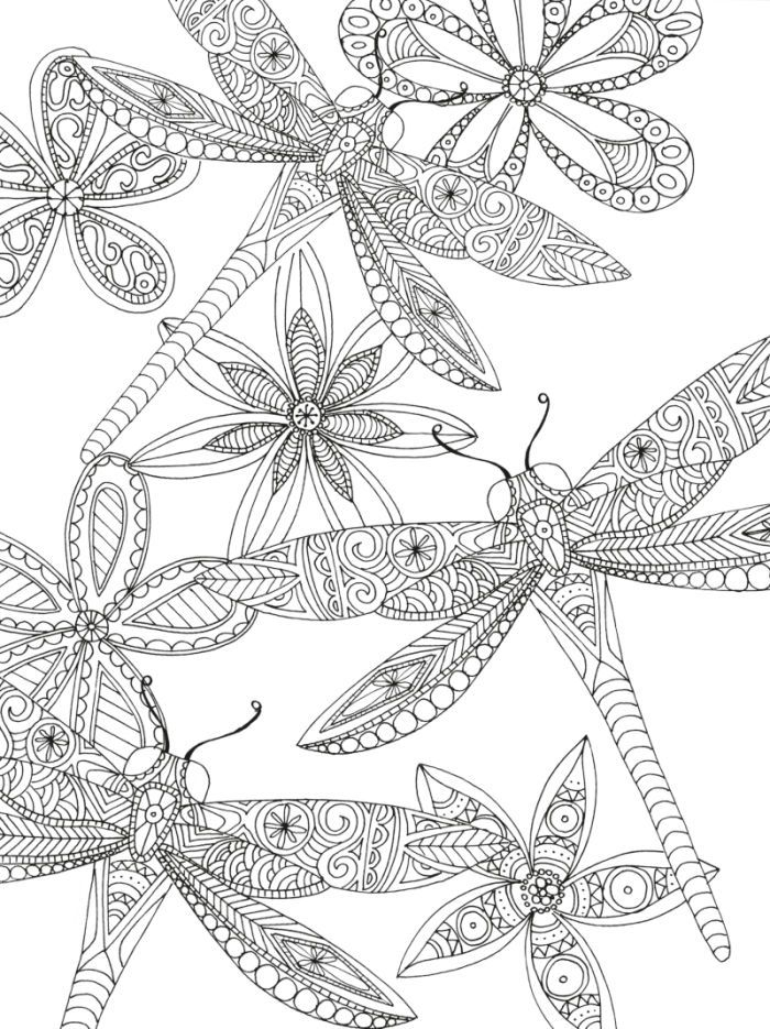 700x935 Printable Adult Coloring Pages Dragon Flies Printable