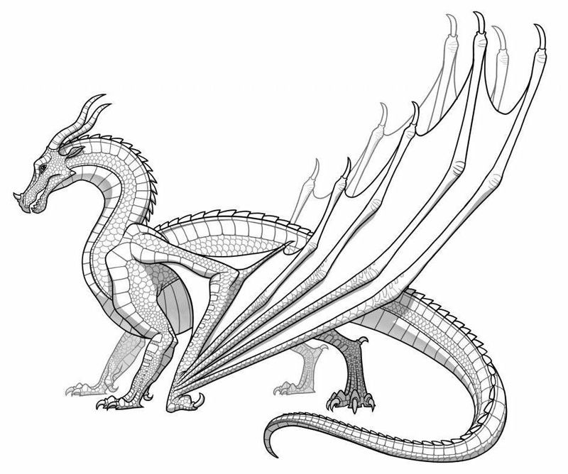 800x668 Dragon Coloring Pages Printable
