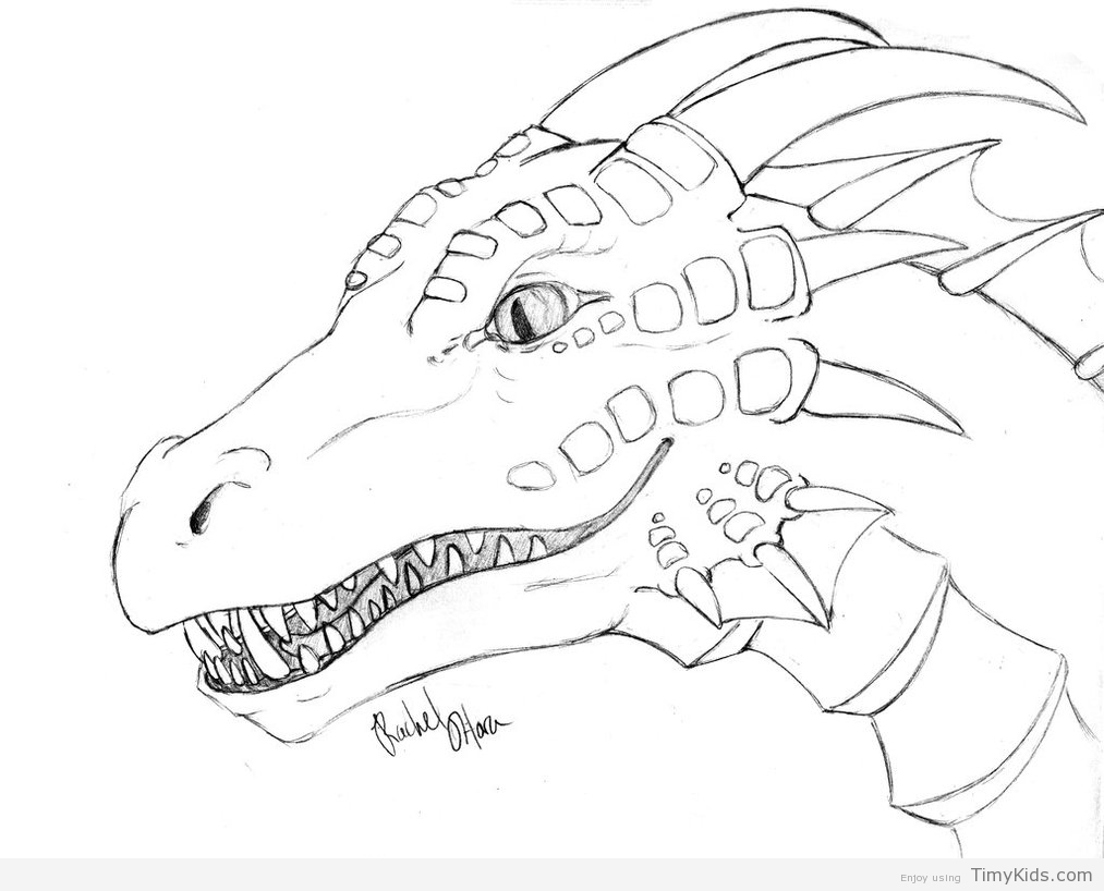 1013x818 Dragon Coloring Pages To Print Timykids Throughout Printable Plan