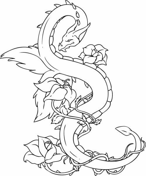 500x604 Free Printable Dragon Coloring Pages