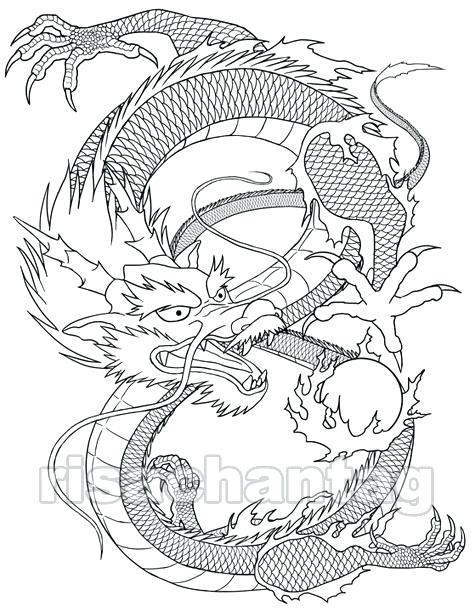 475x612 Great White Shark Coloring Page