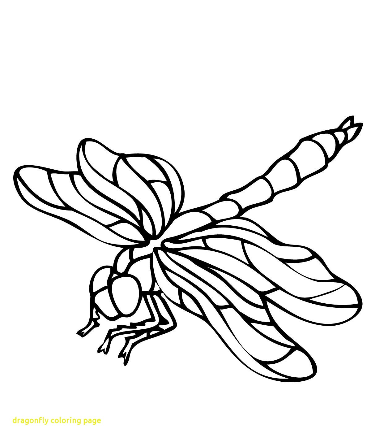 Dragonfly Coloring Pages For Adults At Getdrawings Com Free For