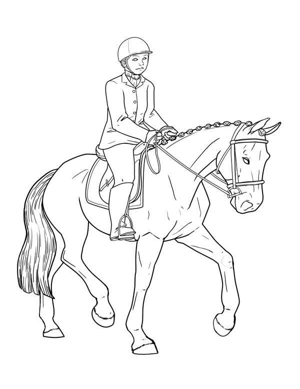 The Best Free Dressage Coloring Page Images Download From